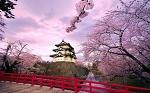 Замок Хиросаки, Япония.