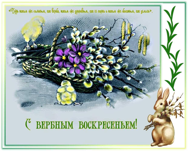 Поздравить открытки с вербным, для ребенка шаблоны