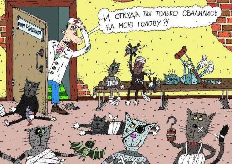 краеведческий картинки про мартовских котов с юмором колоритные принты отлично