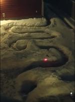 Спасенный пес перестал выходить на прогулки из-за снега и тогда его хозяин сделал нечто потрясающее