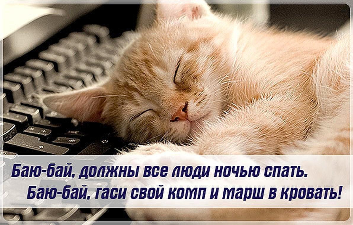 Пора спать спокойной ночи картинки смешные