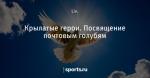 Крылатые герои. Посвящение почтовым голубям