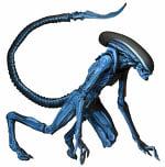 Alien XL, Alien XL