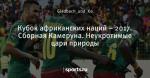 Кубок африканских наций – 2017. Сборная Камеруна. Неукротимые цари природы
