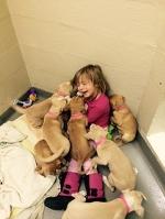 Щенки уверены, что она – одна из них! Маленькая София не знает жизни без помощи животным