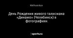День Рождения живого талисмана «Динамо» (Челябинск) в фотографиях