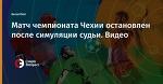 Матч чемпионата Чехии остановлен после симуляции судьи. Видео