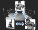 Немного о науке в боксе или 10 доказательств теоремы «Не функциональности треугольника в квадрате круга*» - Все о профессиональном боксе - Блоги - Sports.ru