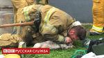 Пожарный из США спас собаку искусственным дыханием рот в рот - BBC Русская служба