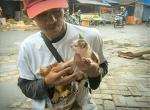 Люди со всего мира помогают этому человеку спасать кошек. | ВМЖ