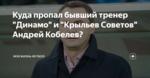 """Куда пропал бывший тренер """"Динамо"""" и """"Крыльев Советов"""" Андрей Кобелев?"""