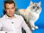 Дорофей Медведев, Дорофей Медведев
