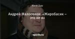 Андрей Малосолов: «Жиробасик – это не я»