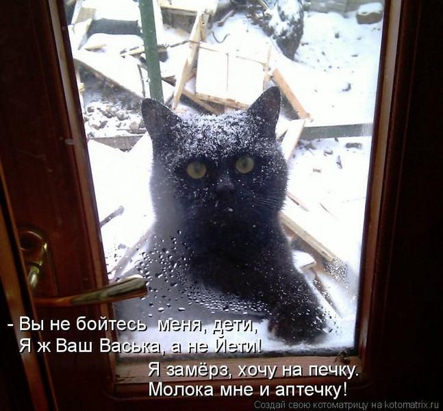 Они прийдут за тобой коты картинки