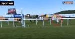 Британская журналистка остановила коня на скаку. В прямом эфире