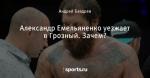 Александр Емельяненко уезжает в Грозный. Зачем?