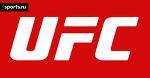 Превью к UFC