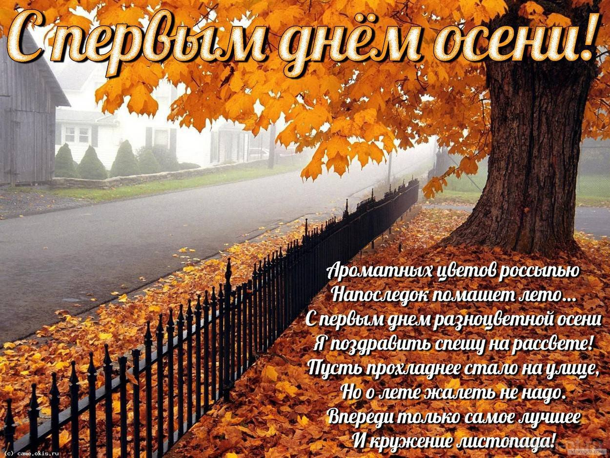 индейки открытки осень наступила фото можете этого