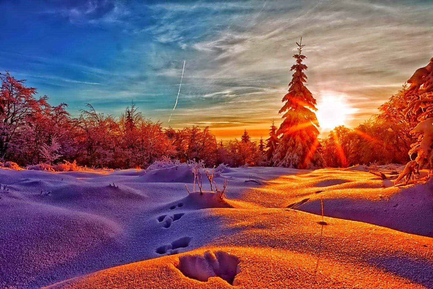 Фото зимний рассвет отличие