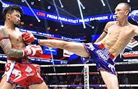 бокс, тайский бокс, смешанные единоборства