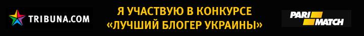 лучший блогер Украины