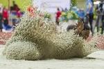 Летающий песок - Стоп-кадр - Блоги - ua.tribuna.com