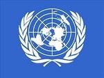 Наблюдатель от ООН, Наблюдатель от ООН