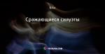 Сражающиеся силуэты - Стоп-кадр - Блоги - ua.tribuna.com