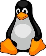 Пингвин, Пингвин