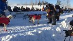 Yukon Quest - Official Site